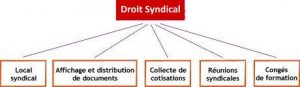 Droit_syndical_large
